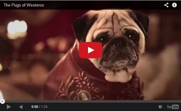 Pugs take over Westeros in Game of Thrones video parody…because why not?