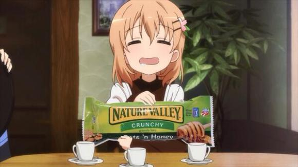 nature valley anime expo