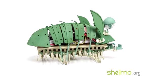 shellmo 9