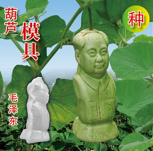 Start a horticultural revolution with gourds in the shape of Mao Zedong and more!