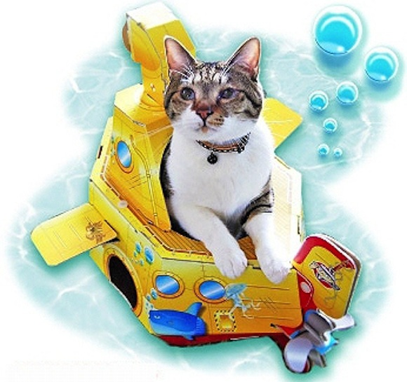 We found the perfect present for your beloved cat this summer…a cardboard submarine!