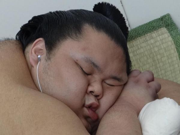 Meet Chiyomaru: the cutest gosh-darn sumo wrestler you'll ever see