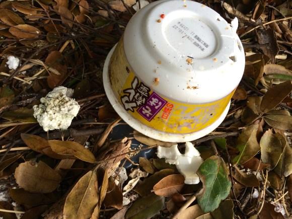 instant ramen cup