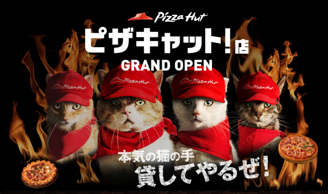 Pizza Hut in Japan is now run by four bossy felines in new adorable campaign