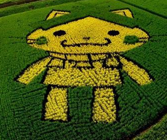 Shimane Prefecture's shrine-headed mascot is now an adorable rice field
