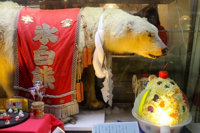 You can eat a polar bear in Kagoshima