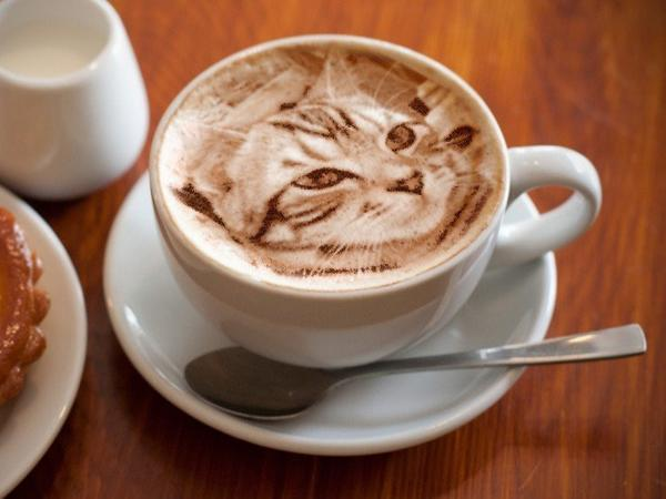 Ultra-realistic cat latte art blows us away, puts us off our coffee