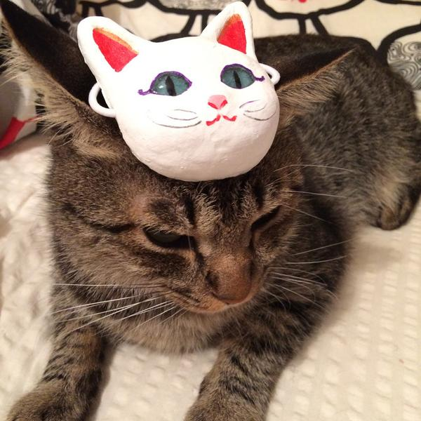 What's cuter than a cat? A cat with a cat-mask on