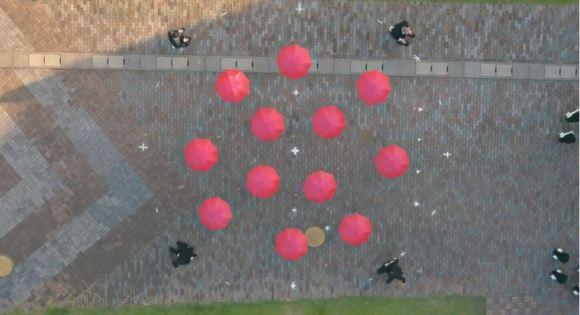 OK Go 4
