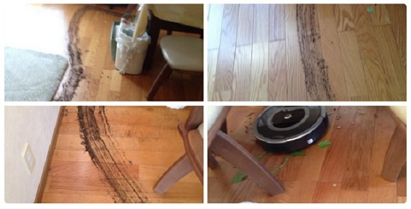 Robot rebellion begins with a cranky Roomba, Internet users too busy laughing to fight back