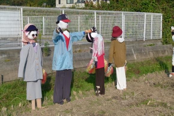 2014.11.24 scarecrows yahoo blog 1