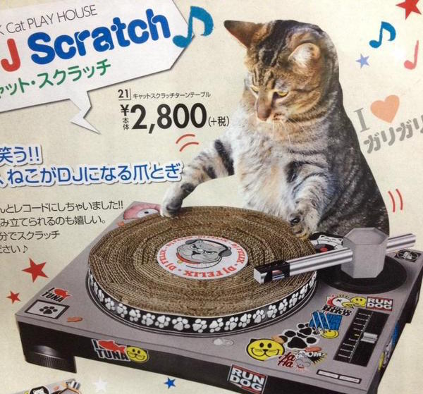 Transform your cat into DJ Scratchalot this holiday season