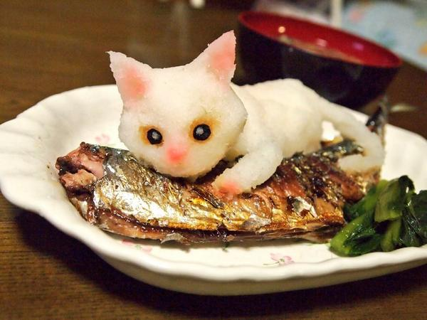 Grated white radish cat spices up traditional Japanese home cooking