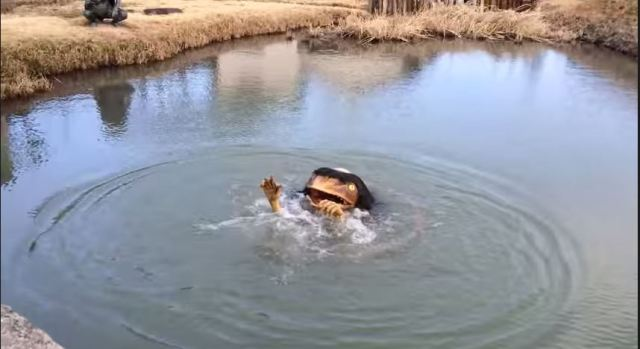 Hyogo town scares children away with mechanical kappa in park's pond