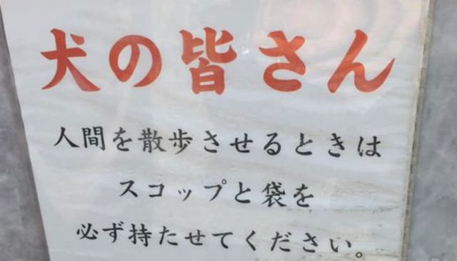 Having lost faith in humans, Japanese authorities turn to the dogs to get things done