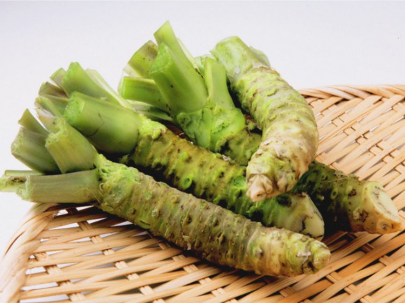 5 amazing health and beauty benefits of eating wasabi