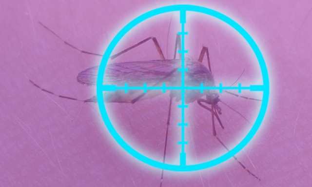 Tohoku University team discovers blue light is effective at killing insects