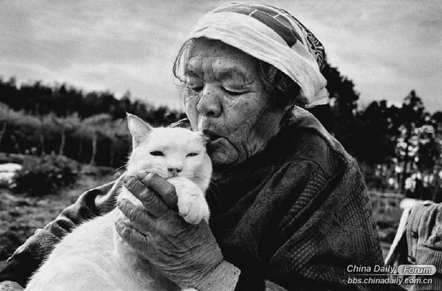 Woman's best friend: Possibly the sweetest photos of a grandma and her cat you will ever see
