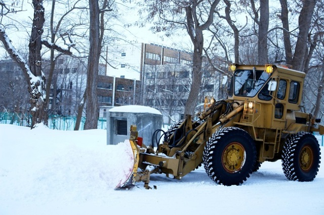 To hike or hibernate for the winter? The woes of a Hokkaido University student