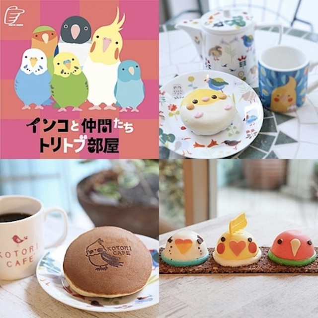 Pet Bird Exhibit at Tokyu Hands Ikebukuro offers adorable Parakeet cakes and much more!