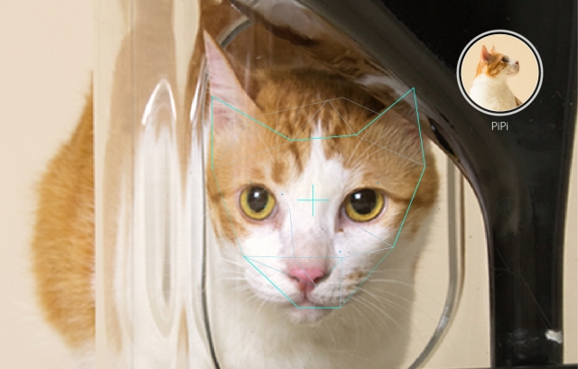 This is the most technologically-advanced cat feeder you'll ever find