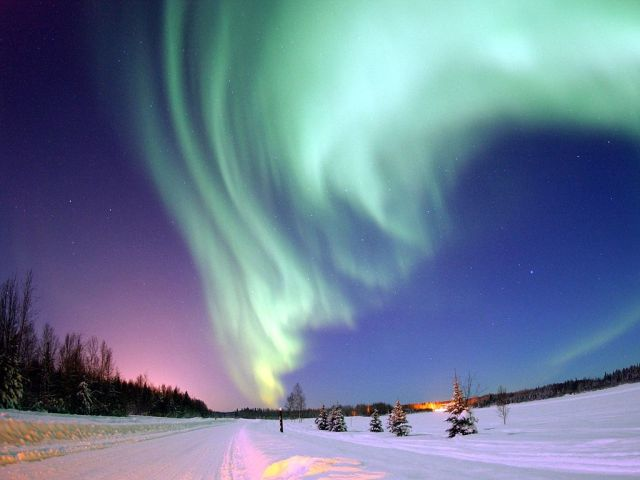 Is it true that Japanese go to Alaska to copulate under the Aurora? 【Myth-Busters】