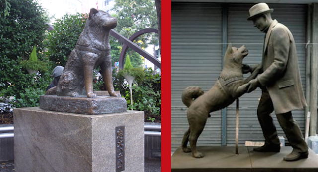 Hachiko, Japan's most loyal dog, finally reunited with owner in heartwarming new statue in Tokyo