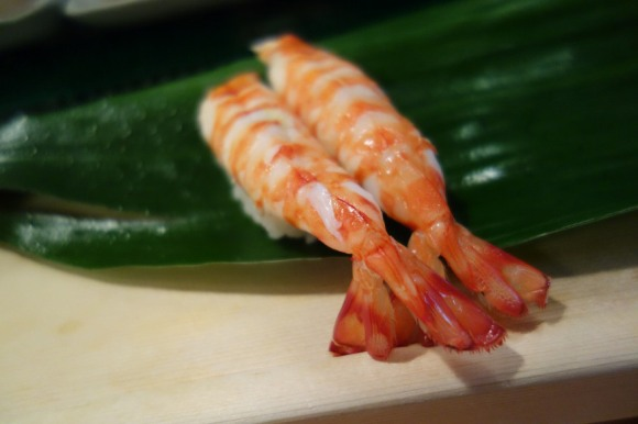 sushi (16)