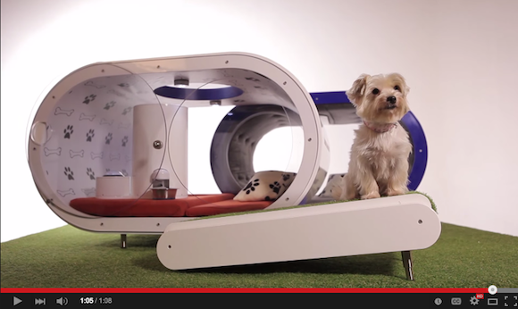 Samsung's Dream Doghouse: a $30,000 pad for the cultivated canine