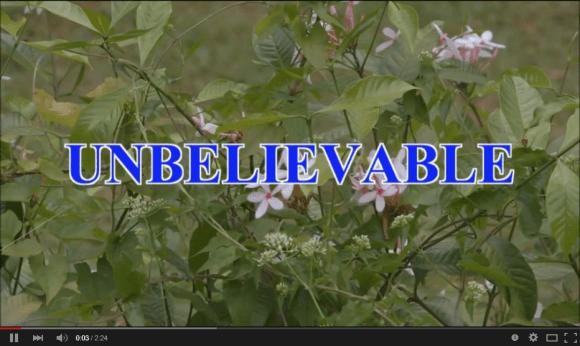 unbelievable 01