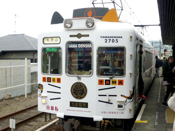 Neko rail! Wakayama's Tama Train is covered in cats both inside and out