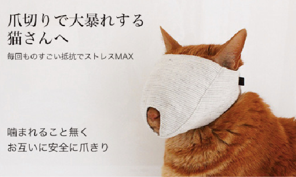 Tired of fearing for your life while clipping your cat's claws? Cat mask offers an easy solution