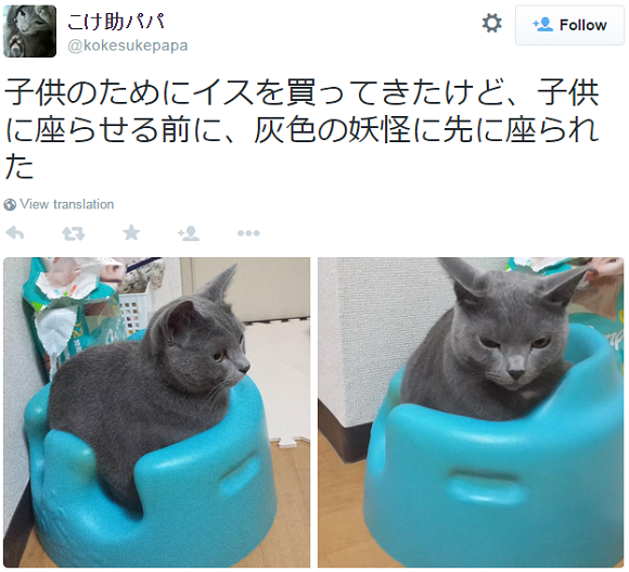 Adorable little monsters steal child's seat, helpless father simply posts photos to Twitter