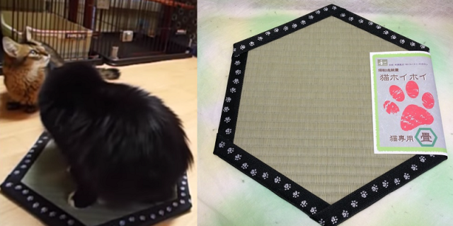 Use this new Japanese pad to keep your cat in one spot with the power of magic circles!