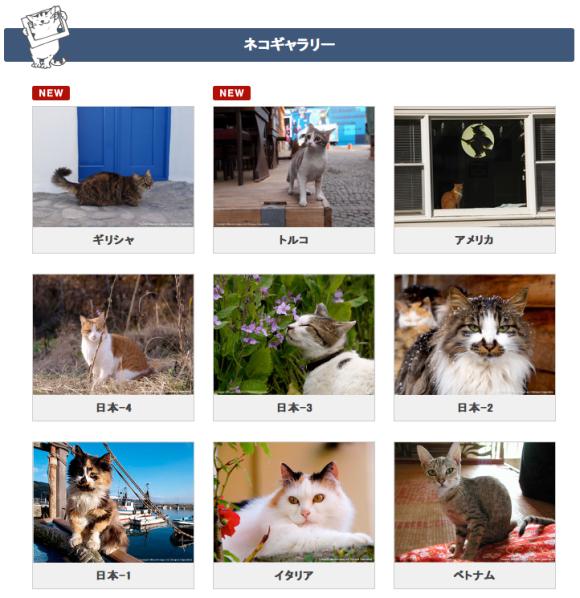 catgallery