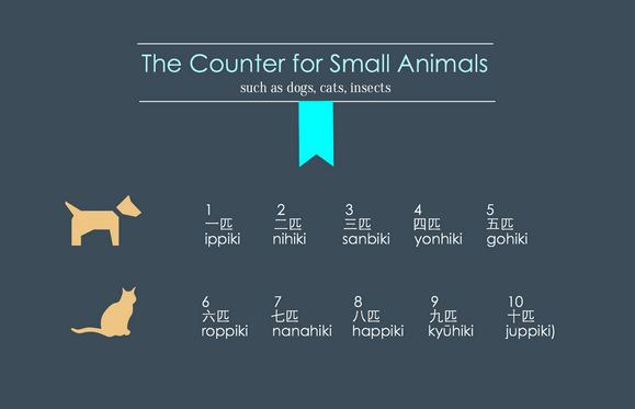 Counting in Japanese just became a whole lot easier with this handy infographic