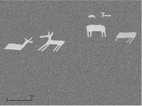 Japanese team discovers 24 new geoglyphs at Nazca, including llamas