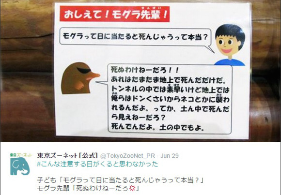 Senpai Mole answers kids' questions, but is kind of a jerk about it