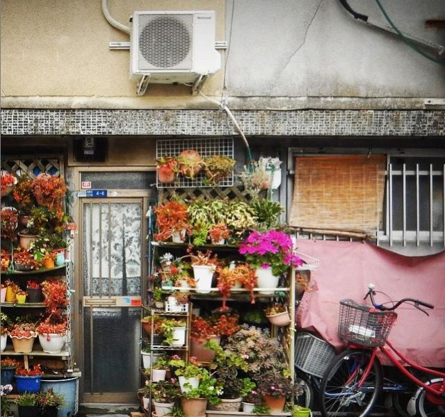 Japanese photographer captures gorgeous photos of timeless building facades in Tokyo