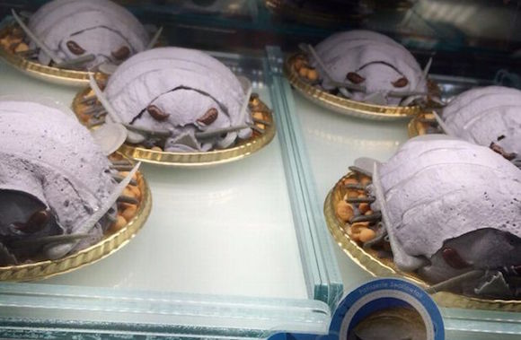 Shokotan munches on limited edition isopod cake in Shibuya