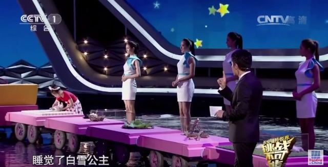 "Young girl ""hypnotizes"" animals on Chinese TV show, we're not entirely convinced 【Video】"