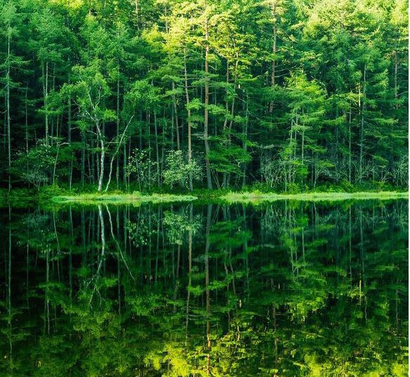 Nagano Prefecture's Mishaka Pond offers mirror-like waters, inspiration for art lovers