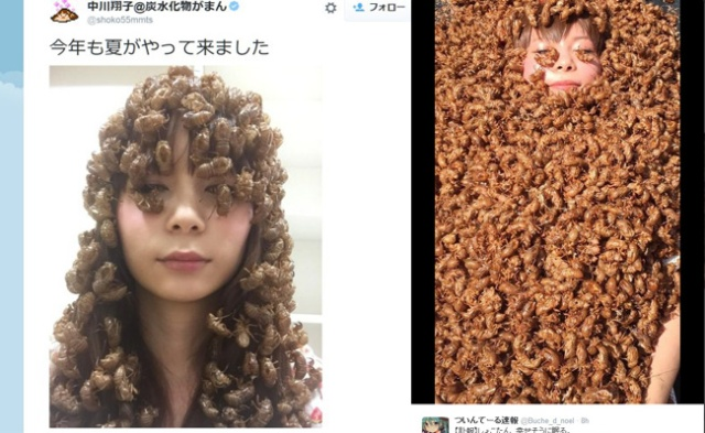 Japanese celeb Shokotan unveils her 2015 cicada shell fashion, then bathes in them