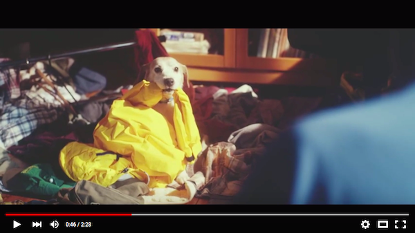 Toyota ad about lonely father and dog has a twist ending, will tug at your heartstrings 【Video】