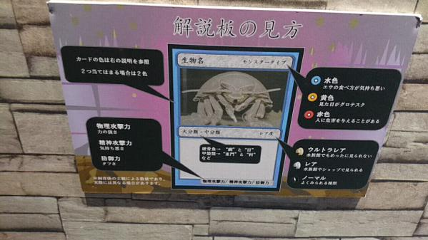 Sea turtle, I choose you! Aquarium in Japan makes learning fun with trading card-themed displays