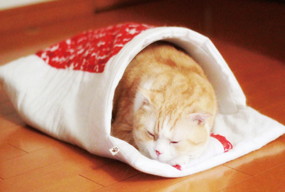 New range of futons for cats feature traditional Japanese patterns, made with tails in mind