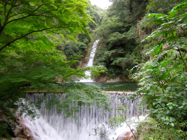 Five nature hikes and trail runs just off Japan's bullet train
