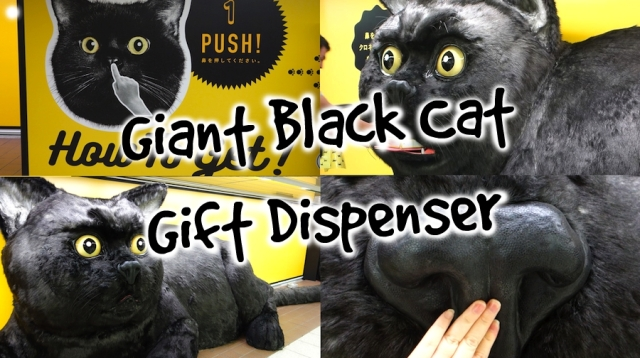 Giant black cat appears in Shinjuku Station, gives gifts in exchange for nose rubs【Pics & Video】