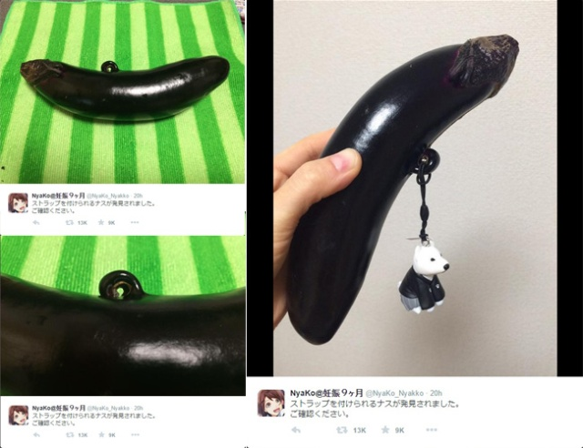 Eggplant found with naturally grown-in accessory holder