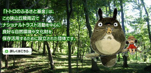 Winter walking event takes you around Totoro forest loved by Hayao Miyazaki